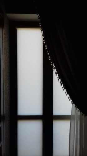 рулонные шторы style=